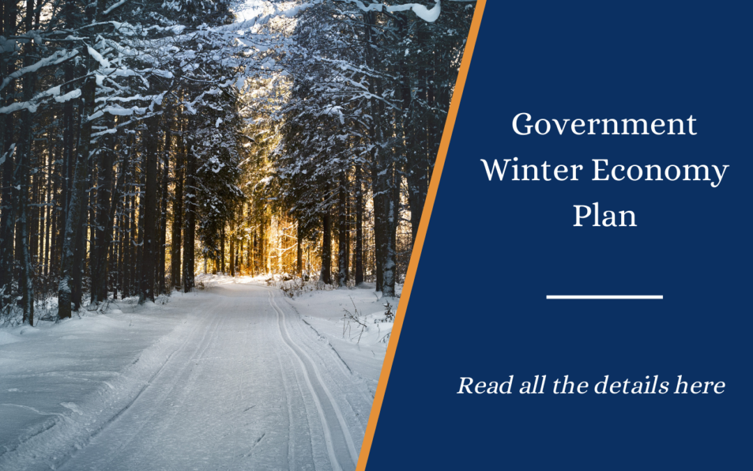 Summary of the Government's Winter Economy Plan